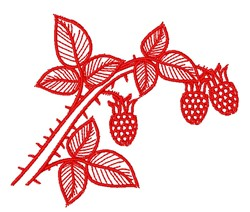 Raspberry Outline embroidery design
