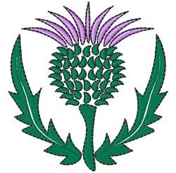 Scottish Thistle embroidery design