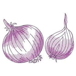 Sketched Realistic Onion embroidery design