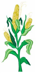 Corn Stalk embroidery design