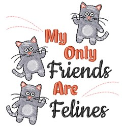 Kitten My Only Friends Are Felines embroidery design