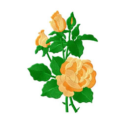 Yellow  Roses 3 embroidery design
