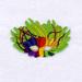 Mardi Gras Mask 4 embroidery design
