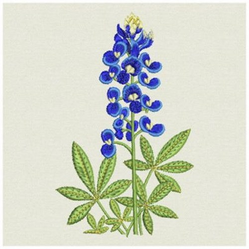 Bluebonnet Embroidery Designs Machine Embroidery Designs