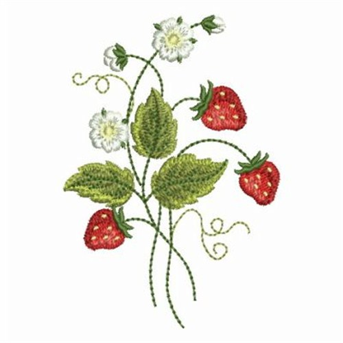 strawberry plant embroidery designs machine embroidery designs at. Black Bedroom Furniture Sets. Home Design Ideas