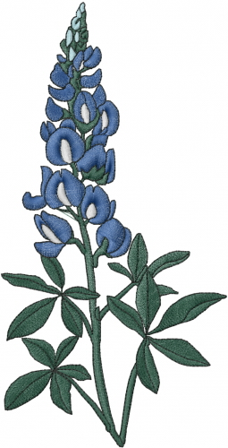 Bluebonnet Flower Embroidery Designs Free Machine Embroidery