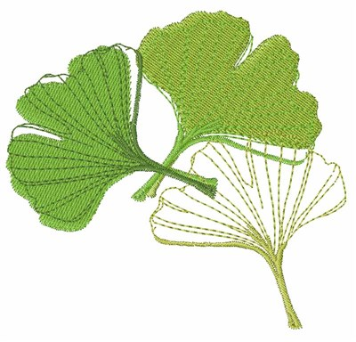 Ginkgo Leaf Embroidery Designs Machine Embroidery Designs At