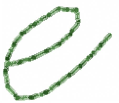 Old Script Font e Embroidery Design