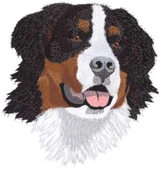 Bernese Mountain Dog Embroidery Design