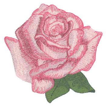 Table Mountain Rose Embroidery Designs, Machine Embroidery Designs at EmbroideryDesigns.com