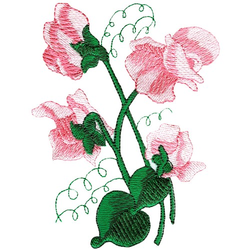 Sweat Pea Embroidery Designs