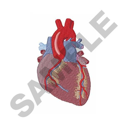 HUMAN HEART Embroidery Designs Machine Embroidery Designs