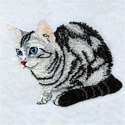 Realistic Cat Embroidery Designs Machine Embroidery Designs At EmbroideryDesigns.com