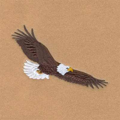Soaring Eagle Embroidery Designs Machine Embroidery Designs At EmbroideryDesigns.com