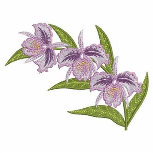 Orchid trio embroidery designs machine