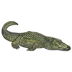 Alligator Crab Bucket Applique Machine Embroidery Digital  |Alligator Design Embroidery Floss