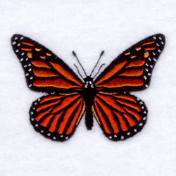 Monarch Butterfly Embroidery Designs Machine Embroidery