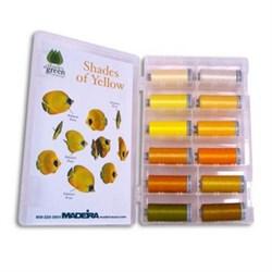 Polyneon Yellow Shade Kit